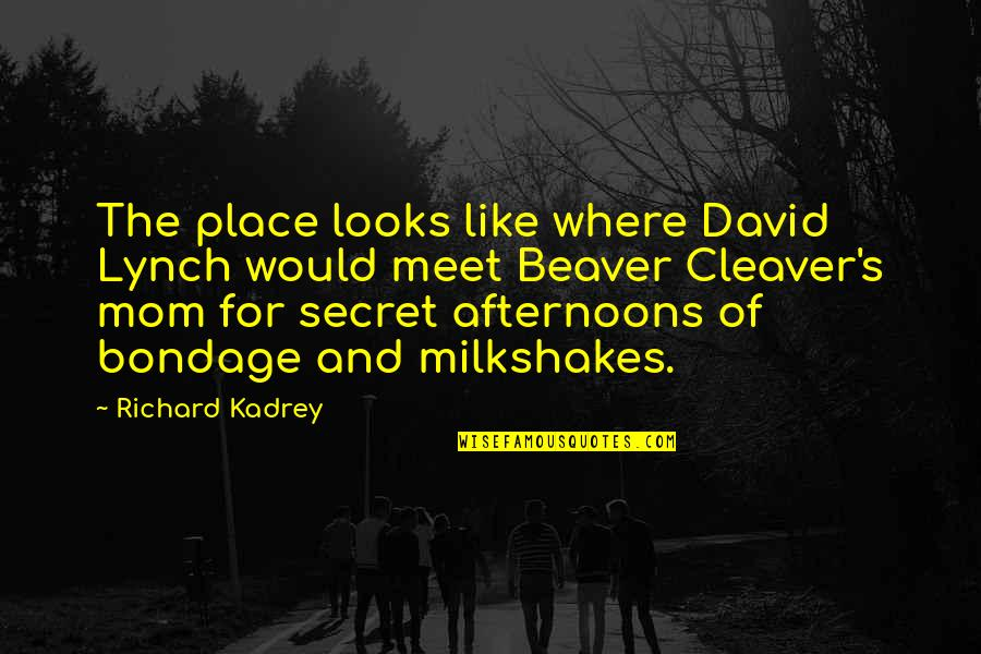 Cleaver Quotes By Richard Kadrey: The place looks like where David Lynch would