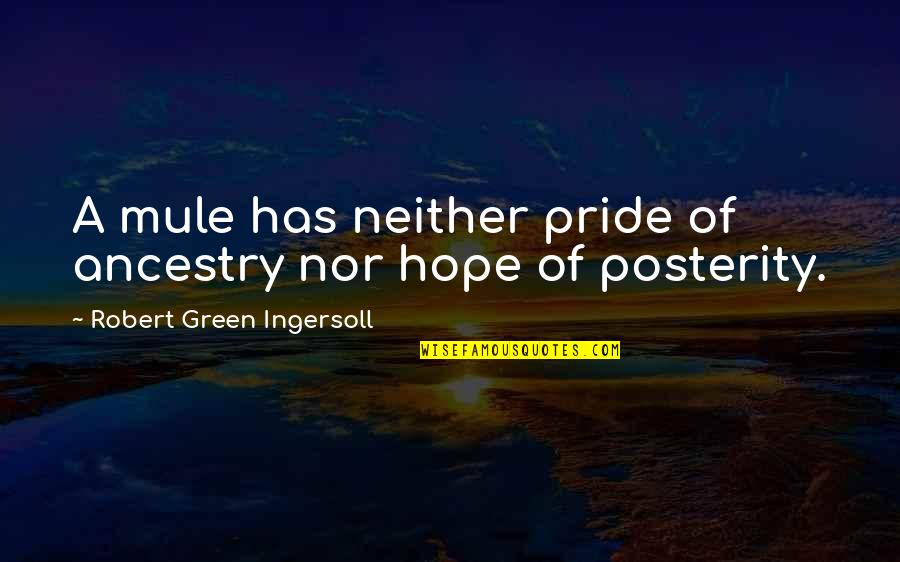 Clever California Quotes By Robert Green Ingersoll: A mule has neither pride of ancestry nor