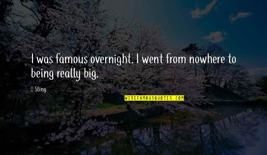 Clocking Quotes By Sting: I was famous overnight. I went from nowhere
