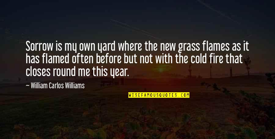 Closes Quotes By William Carlos Williams: Sorrow is my own yard where the new
