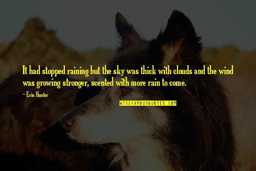 Clouds And Rain Quotes By Erin Hunter: It had stopped raining but the sky was