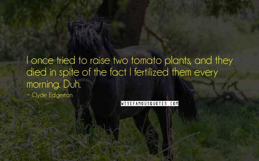 Clyde Edgerton quotes: I once tried to raise two tomato plants, and they died in spite of the fact I fertilized them every morning. Duh.