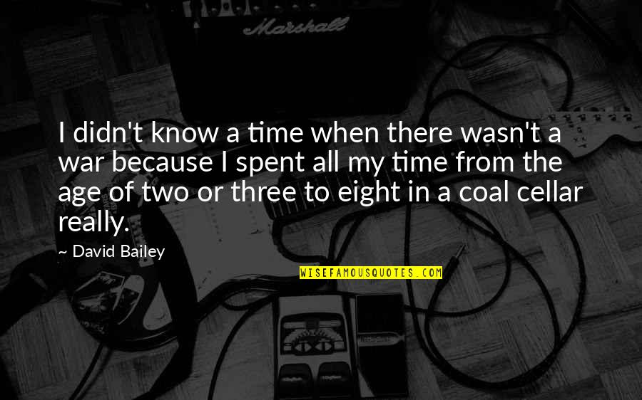 Coal Quotes By David Bailey: I didn't know a time when there wasn't