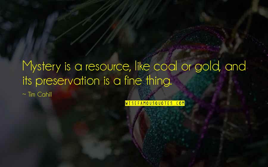 Coal Quotes By Tim Cahill: Mystery is a resource, like coal or gold,