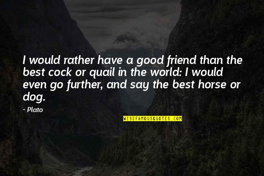 Cock Quotes By Plato: I would rather have a good friend than
