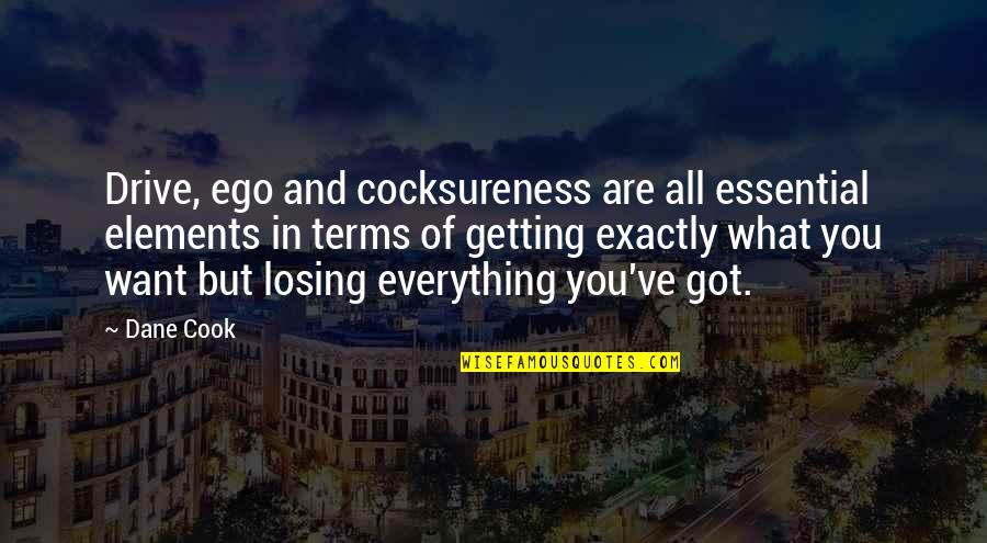 Cocksureness Quotes By Dane Cook: Drive, ego and cocksureness are all essential elements