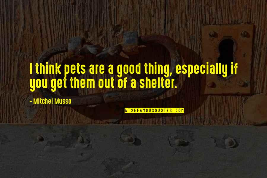 Cockyness Quotes By Mitchel Musso: I think pets are a good thing, especially