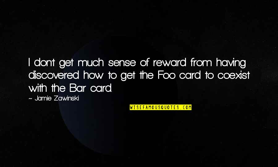 Coexist Quotes By Jamie Zawinski: I don't get much sense of reward from
