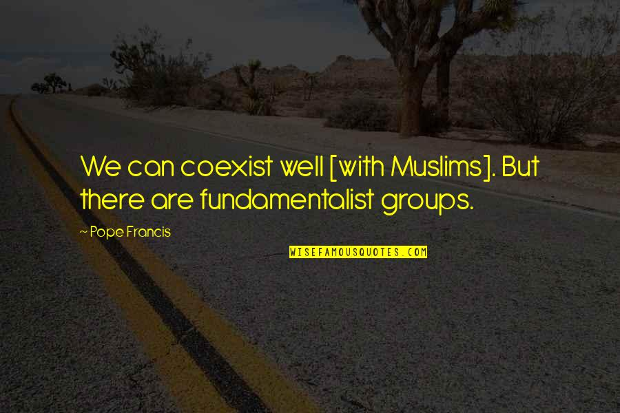 Coexist Quotes By Pope Francis: We can coexist well [with Muslims]. But there