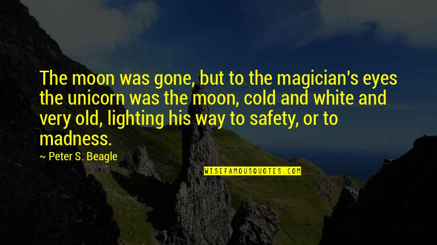 Cold Eyes Quotes By Peter S. Beagle: The moon was gone, but to the magician's