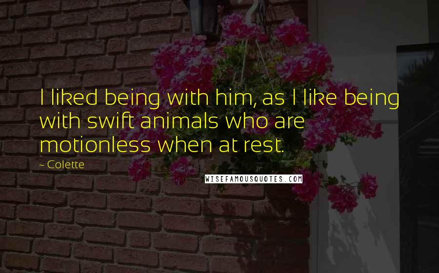 Colette quotes: I liked being with him, as I like being with swift animals who are motionless when at rest.