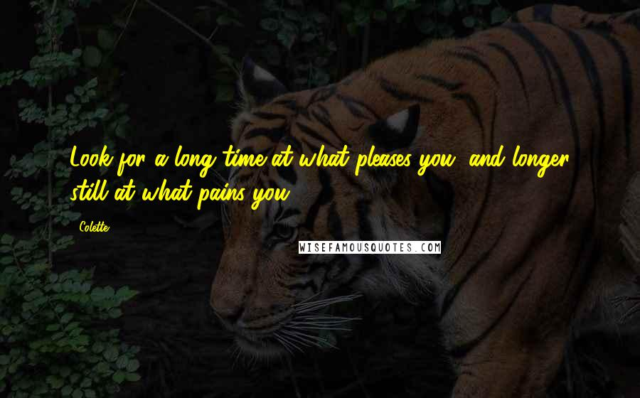 Colette quotes: Look for a long time at what pleases you, and longer still at what pains you ...