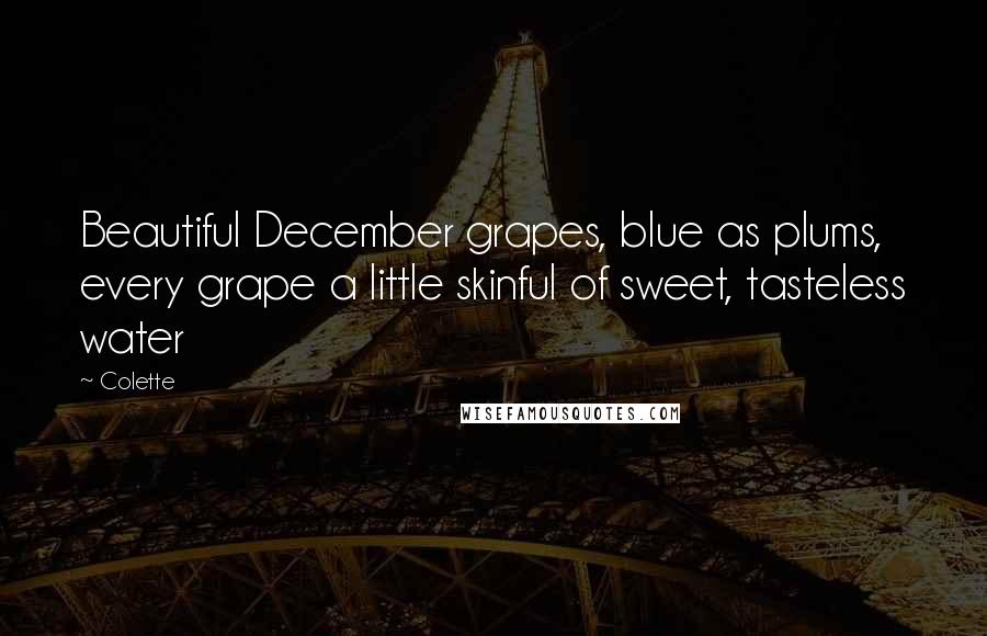 Colette quotes: Beautiful December grapes, blue as plums, every grape a little skinful of sweet, tasteless water