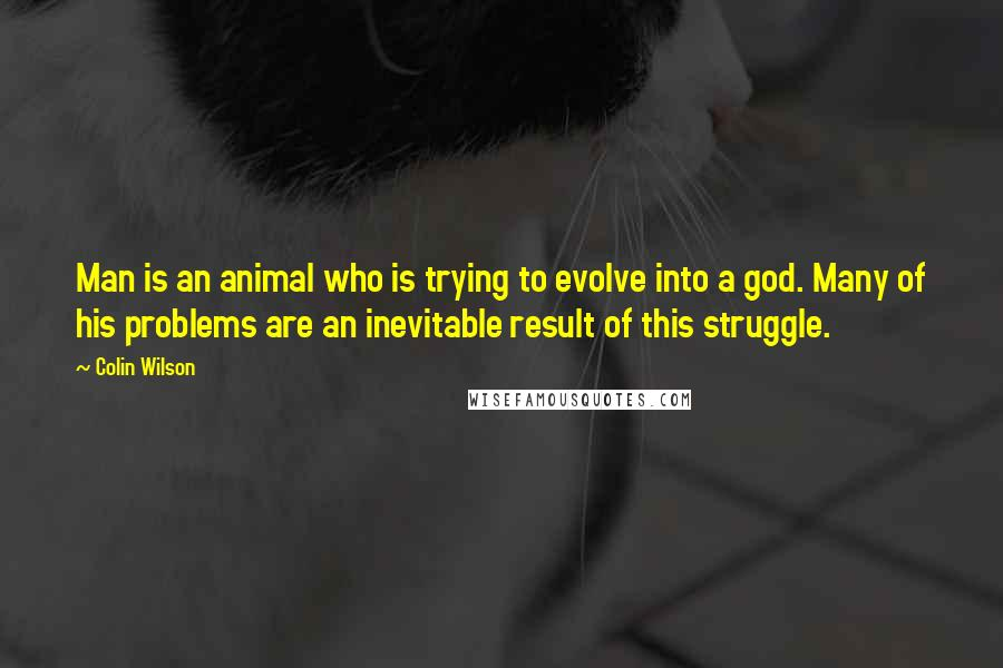 Colin Wilson quotes: Man is an animal who is trying to evolve into a god. Many of his problems are an inevitable result of this struggle.