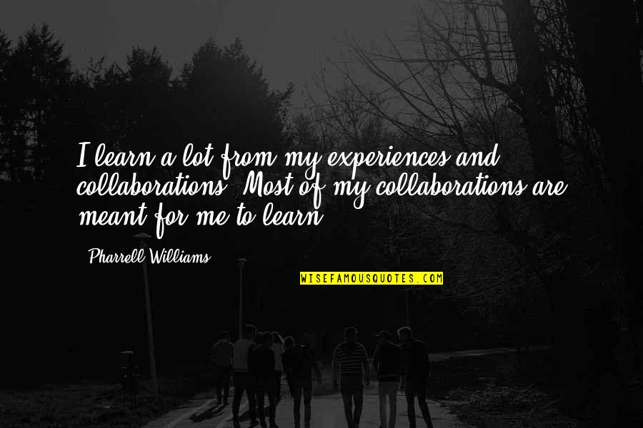 Collaborations Quotes By Pharrell Williams: I learn a lot from my experiences and