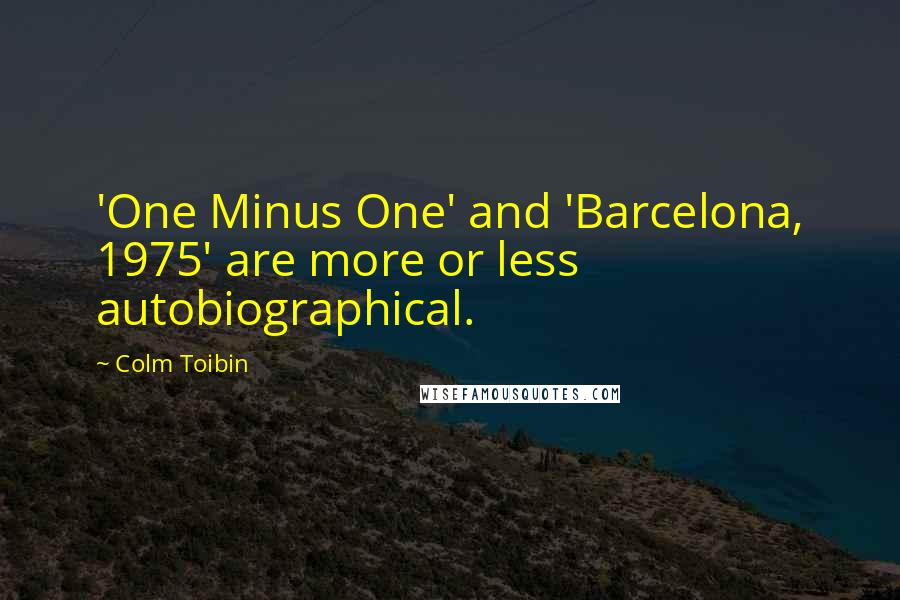 Colm Toibin quotes: 'One Minus One' and 'Barcelona, 1975' are more or less autobiographical.