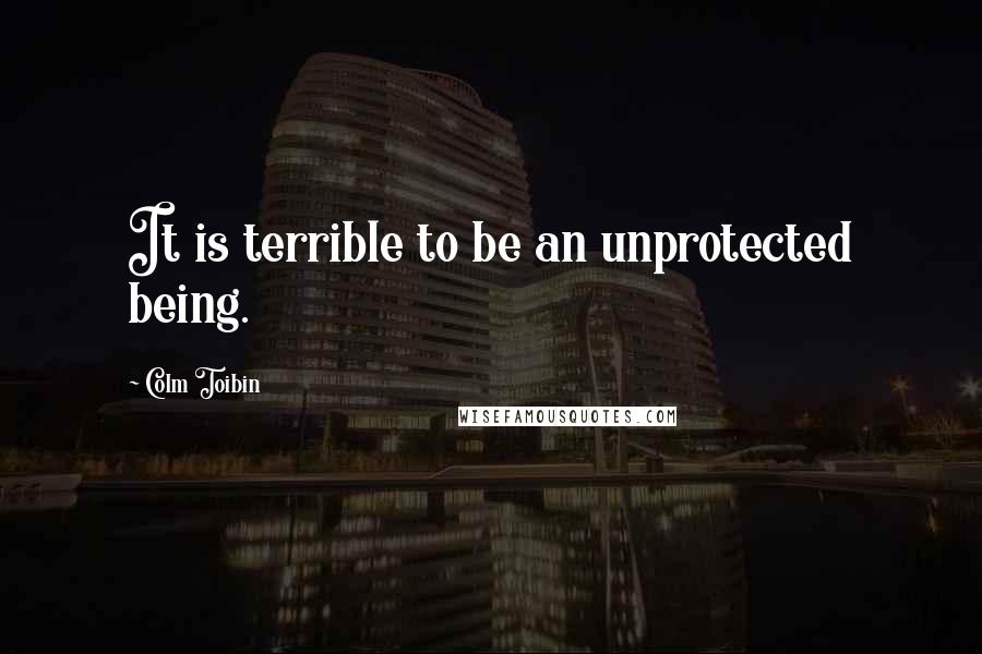 Colm Toibin quotes: It is terrible to be an unprotected being.