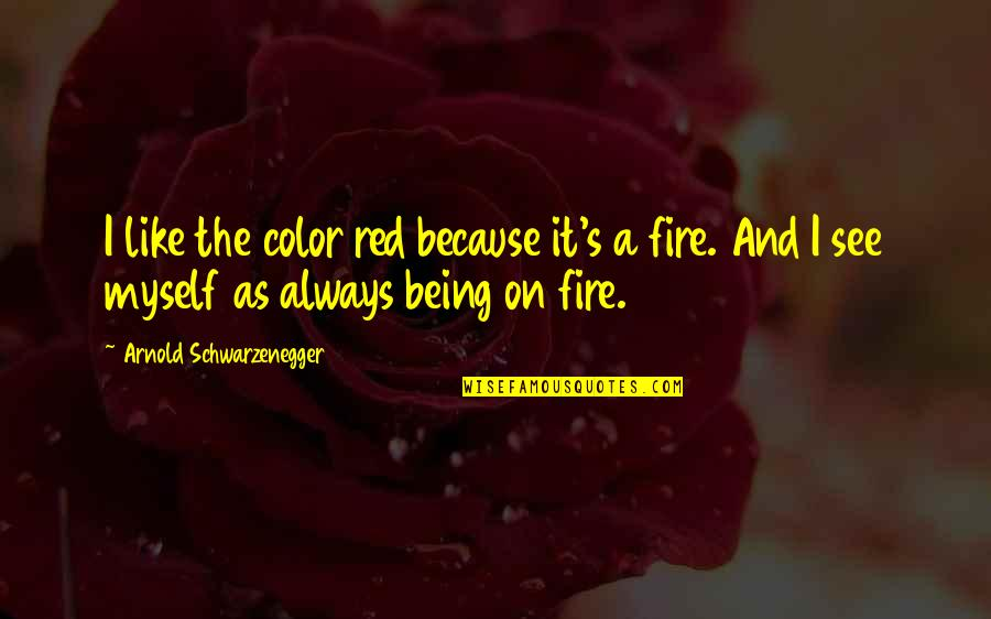 Color Red Quotes By Arnold Schwarzenegger: I like the color red because it's a