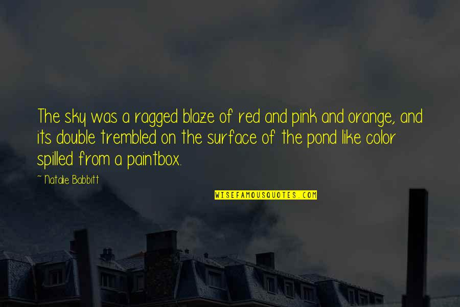 Color Red Quotes By Natalie Babbitt: The sky was a ragged blaze of red