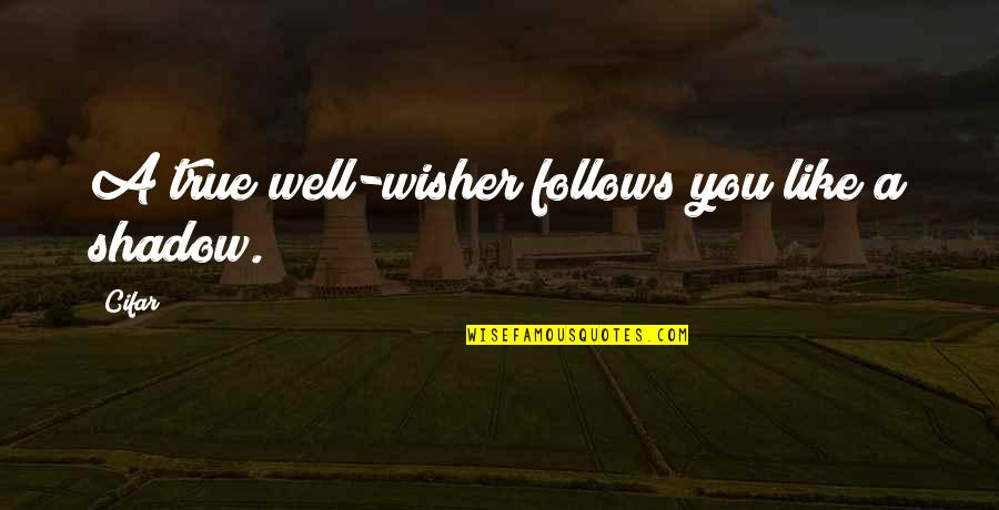 Colors In Your Life Quotes By Cifar: A true well-wisher follows you like a shadow.