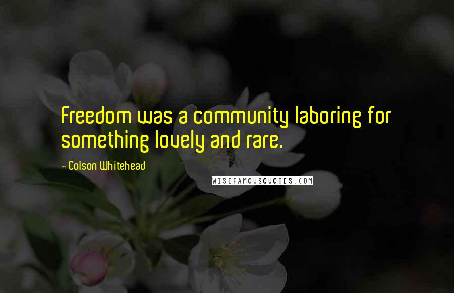 Colson Whitehead quotes: Freedom was a community laboring for something lovely and rare.