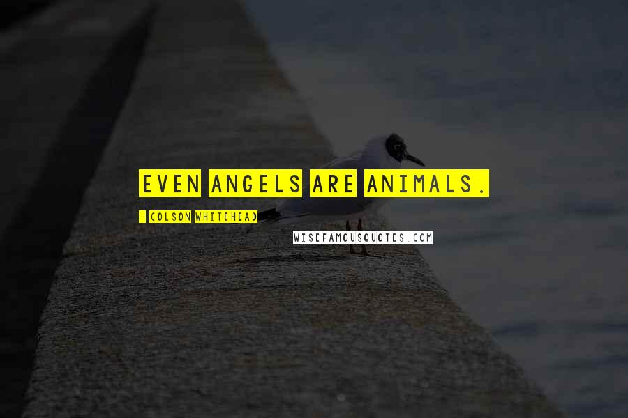 Colson Whitehead quotes: Even angels are animals.
