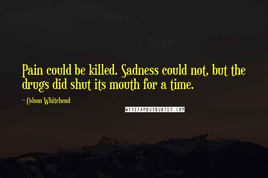 Colson Whitehead quotes: Pain could be killed. Sadness could not, but the drugs did shut its mouth for a time.