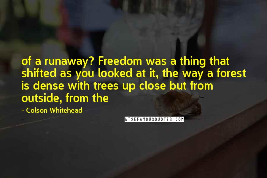 Colson Whitehead quotes: of a runaway? Freedom was a thing that shifted as you looked at it, the way a forest is dense with trees up close but from outside, from the