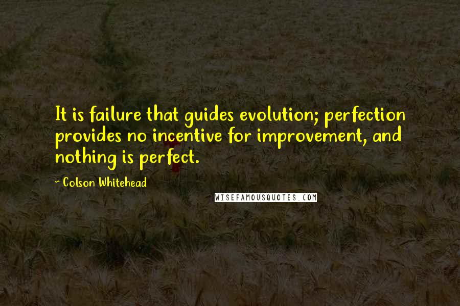 Colson Whitehead quotes: It is failure that guides evolution; perfection provides no incentive for improvement, and nothing is perfect.