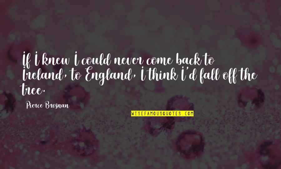 Come On England Quotes By Pierce Brosnan: If I knew I could never come back