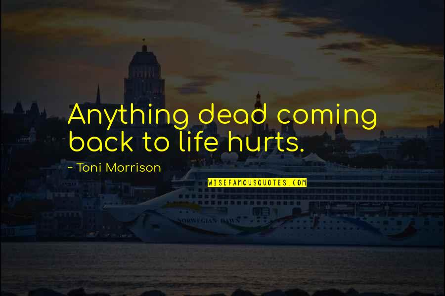 Coming Back Into My Life Quotes By Toni Morrison: Anything dead coming back to life hurts.