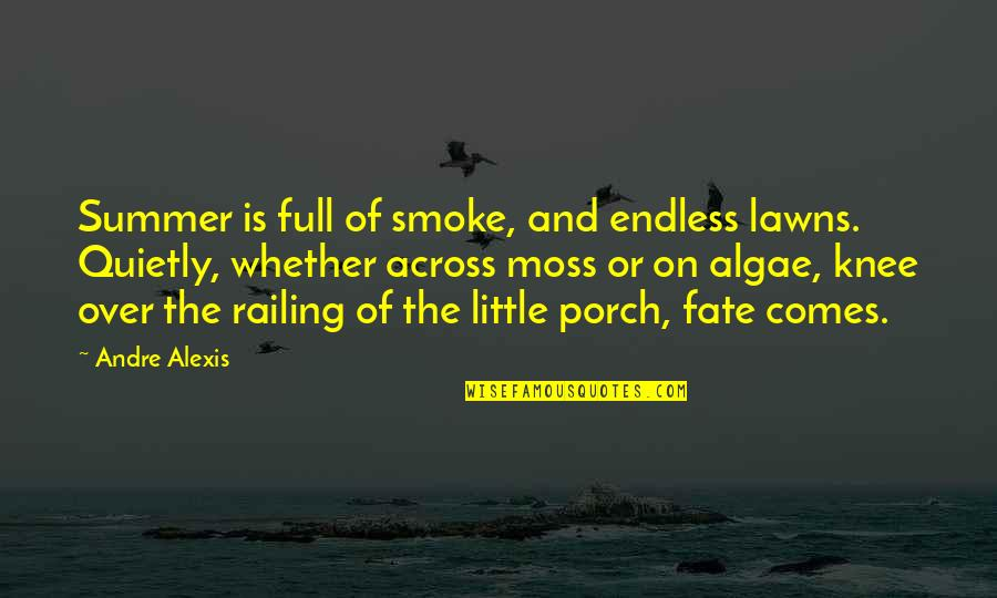 Coming Home After Travel Quotes By Andre Alexis: Summer is full of smoke, and endless lawns.