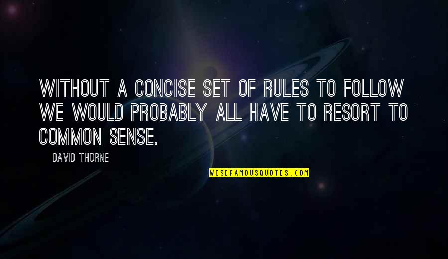 Common Sense Quotes By David Thorne: Without a concise set of rules to follow