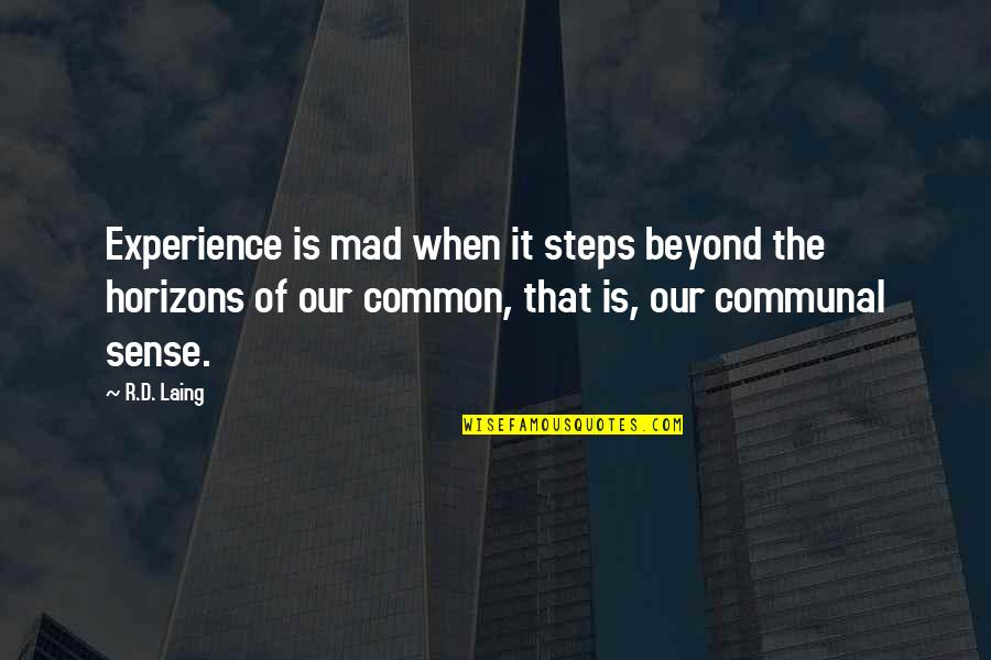 Common Sense Quotes By R.D. Laing: Experience is mad when it steps beyond the