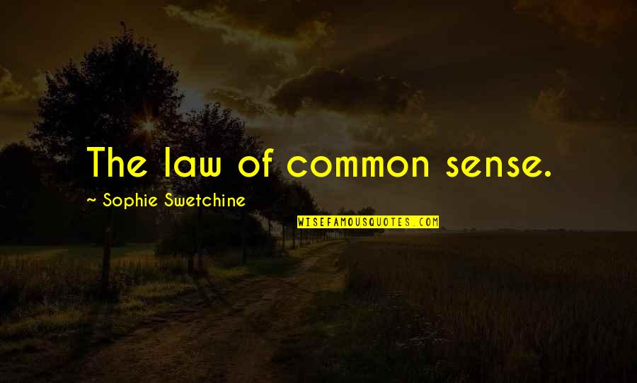 Common Sense Quotes By Sophie Swetchine: The law of common sense.