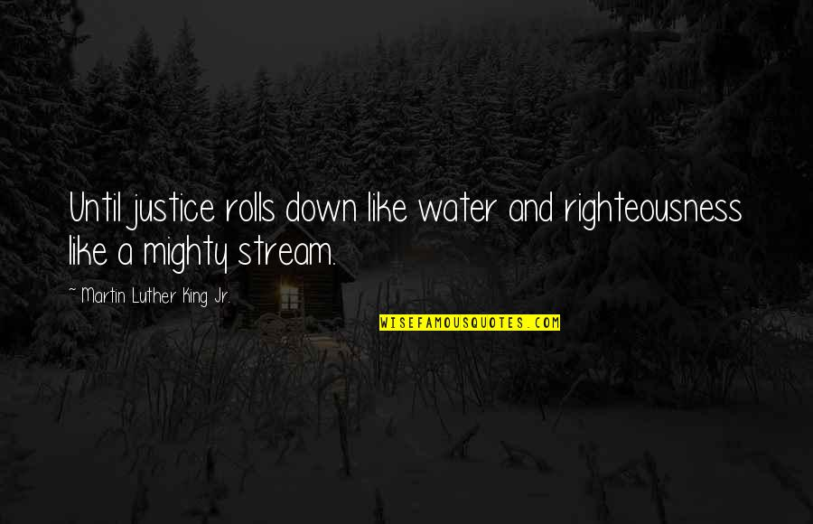 Comp Sci Quotes By Martin Luther King Jr.: Until justice rolls down like water and righteousness