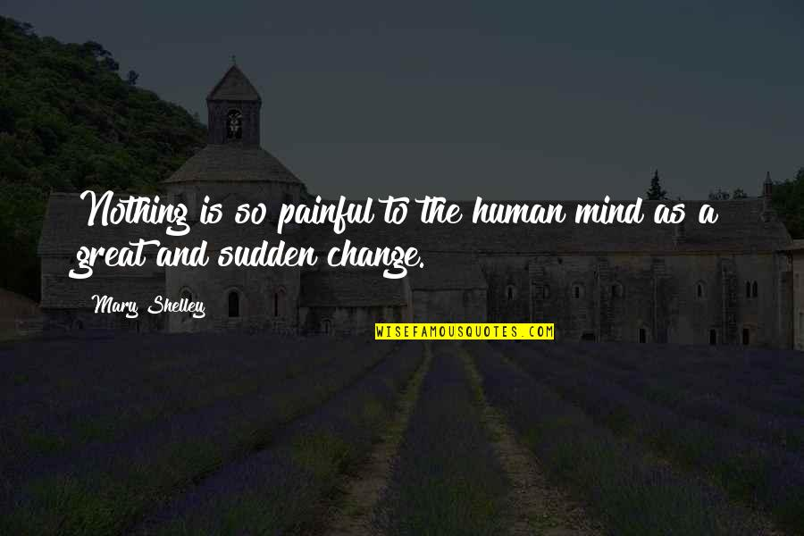 Computer Programing Quotes By Mary Shelley: Nothing is so painful to the human mind