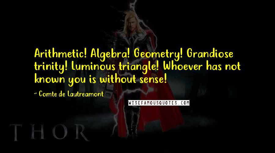 Comte De Lautreamont quotes: Arithmetic! Algebra! Geometry! Grandiose trinity! Luminous triangle! Whoever has not known you is without sense!