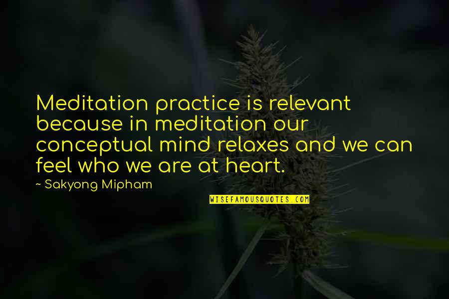 Conceptual Quotes By Sakyong Mipham: Meditation practice is relevant because in meditation our