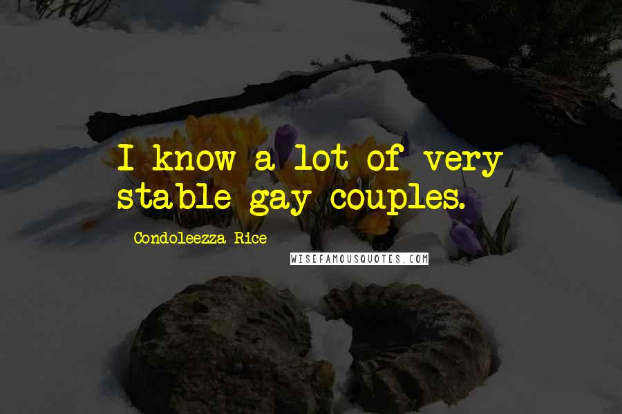 Condoleezza Rice quotes: I know a lot of very stable gay couples.