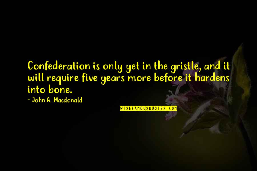 Confederation Quotes By John A. Macdonald: Confederation is only yet in the gristle, and