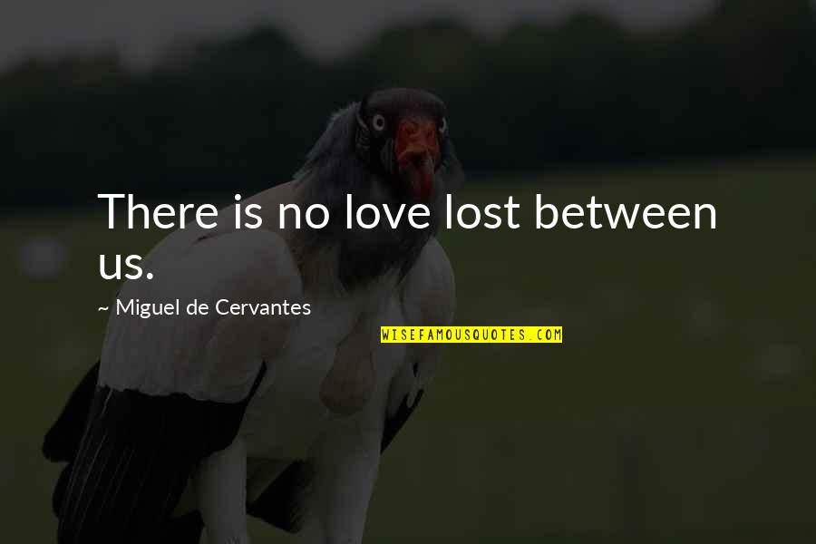 Confusion In Love Quotes By Miguel De Cervantes: There is no love lost between us.
