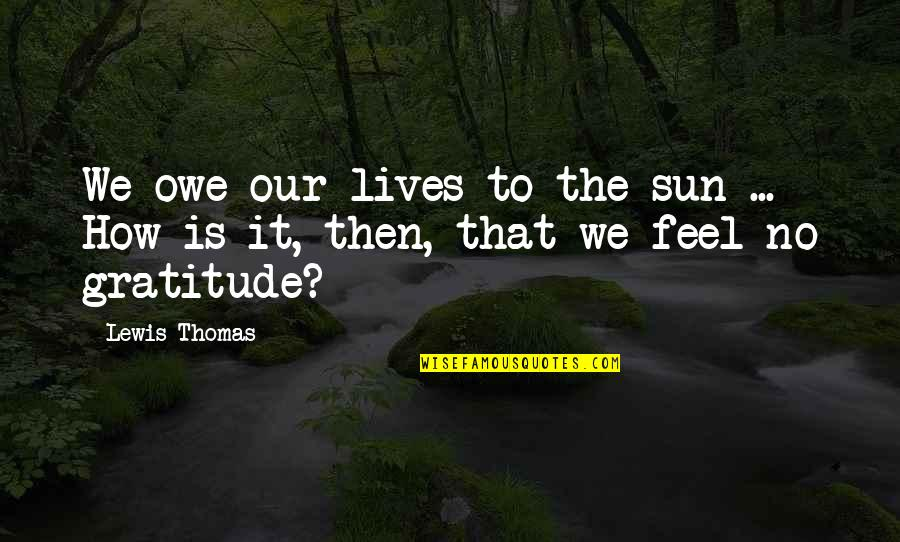 Congratulations On 5 Years Completion Quotes By Lewis Thomas: We owe our lives to the sun ...