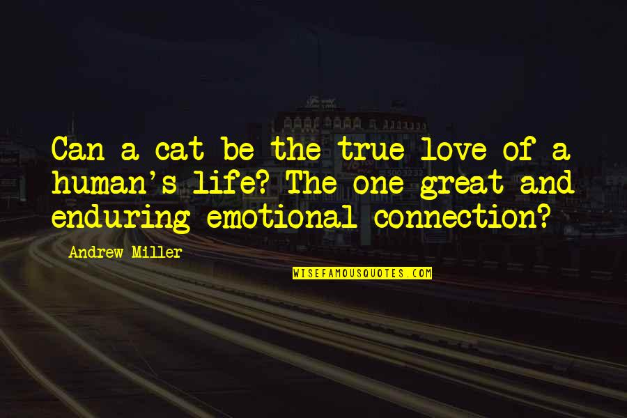 Connection And Love Quotes By Andrew Miller: Can a cat be the true love of