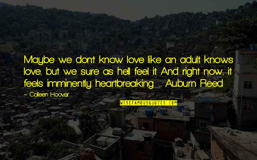 Consciousness Neuroscience Quotes By Colleen Hoover: Maybe we don't know love like an adult