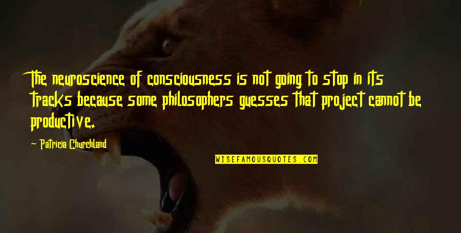 Consciousness Neuroscience Quotes By Patricia Churchland: The neuroscience of consciousness is not going to