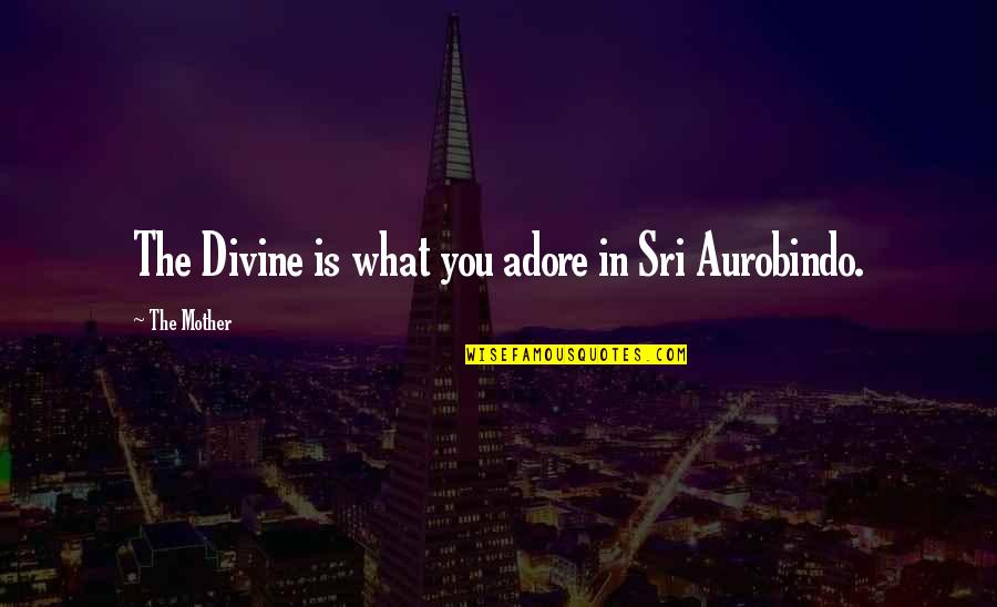 Consideration Bible Quotes By The Mother: The Divine is what you adore in Sri