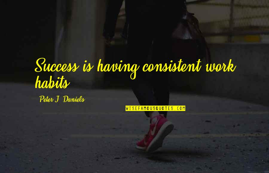 Consistent Work Quotes By Peter J. Daniels: Success is having consistent work habits.