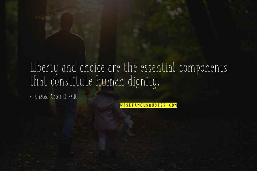 Constitute Quotes By Khaled Abou El Fadl: Liberty and choice are the essential components that
