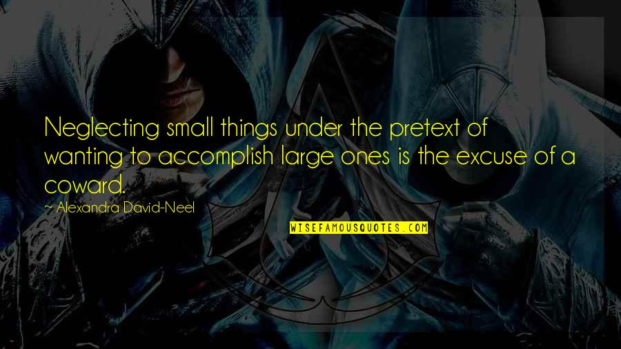 Contextualized Quotes By Alexandra David-Neel: Neglecting small things under the pretext of wanting